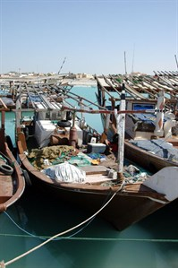 Fishing Dhow
